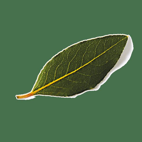 celebrate health product Thai Green Curry Super Grain Bowl garnish