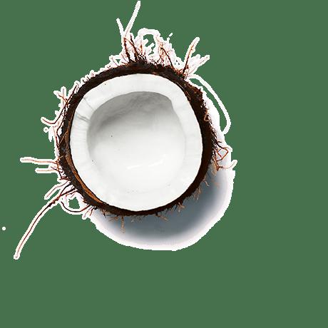 celebrate health product Cauliflower, Coconut & Turmeric Soup garnish