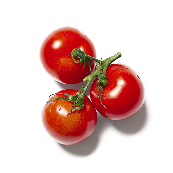 celebrate health product Tomato Sauce garnish