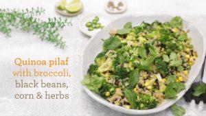 Celebrate Health - Recipes - Quinoa